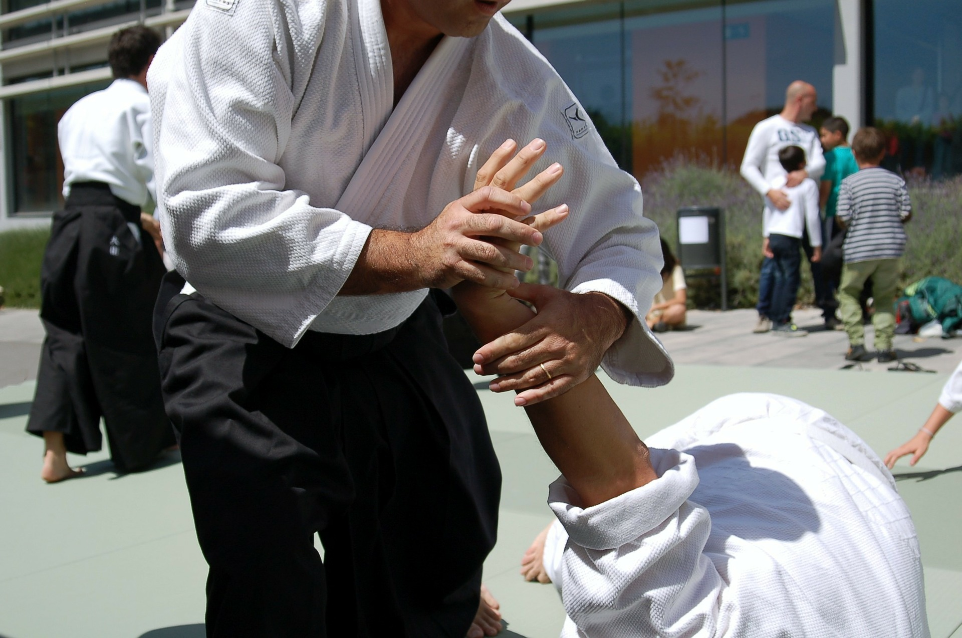 Meijin Den Ryu